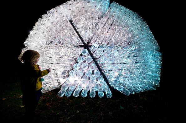Winter Light At Waddesdon: Bruce Munro