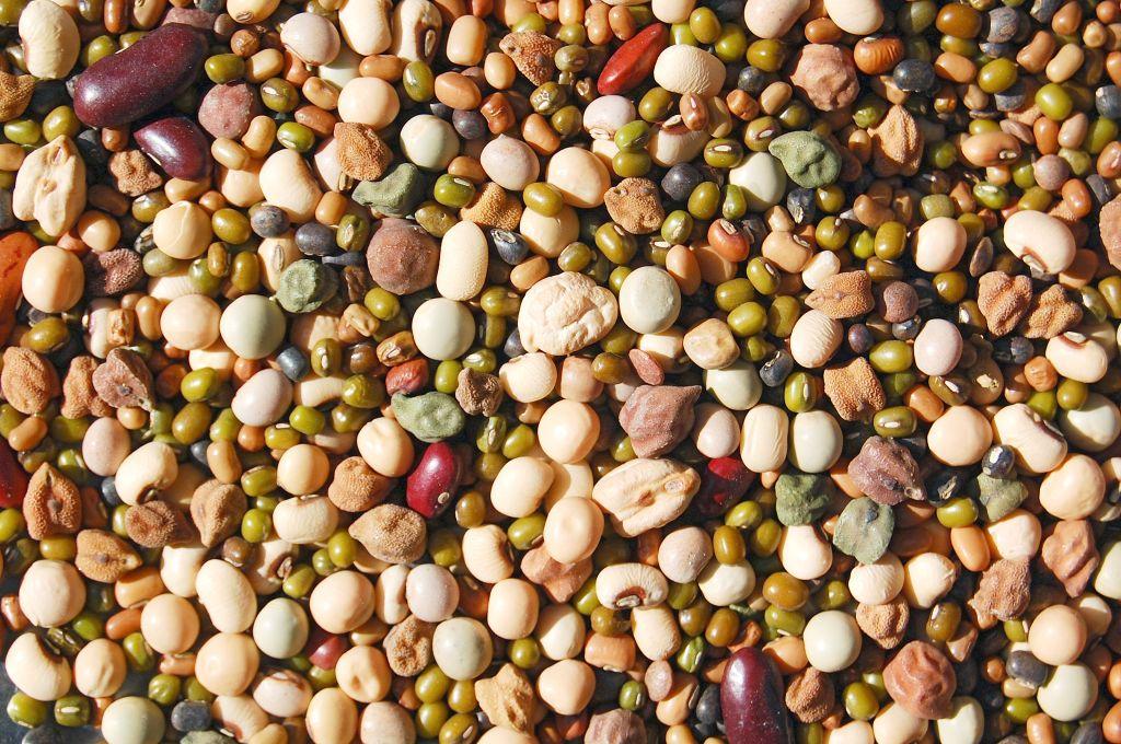 Whole mix Grains & Beans